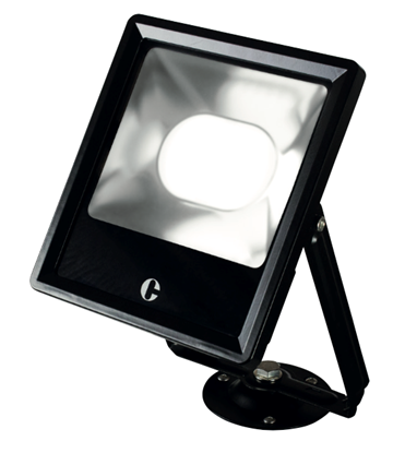 Collingwood 50W Colour Switchable LED Floodlight FL05BXCS