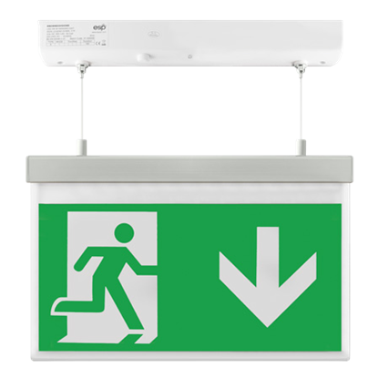 ESP EM2WMEXHSIGND LED 2W Maintained Hanging Exit Sign Legend Down