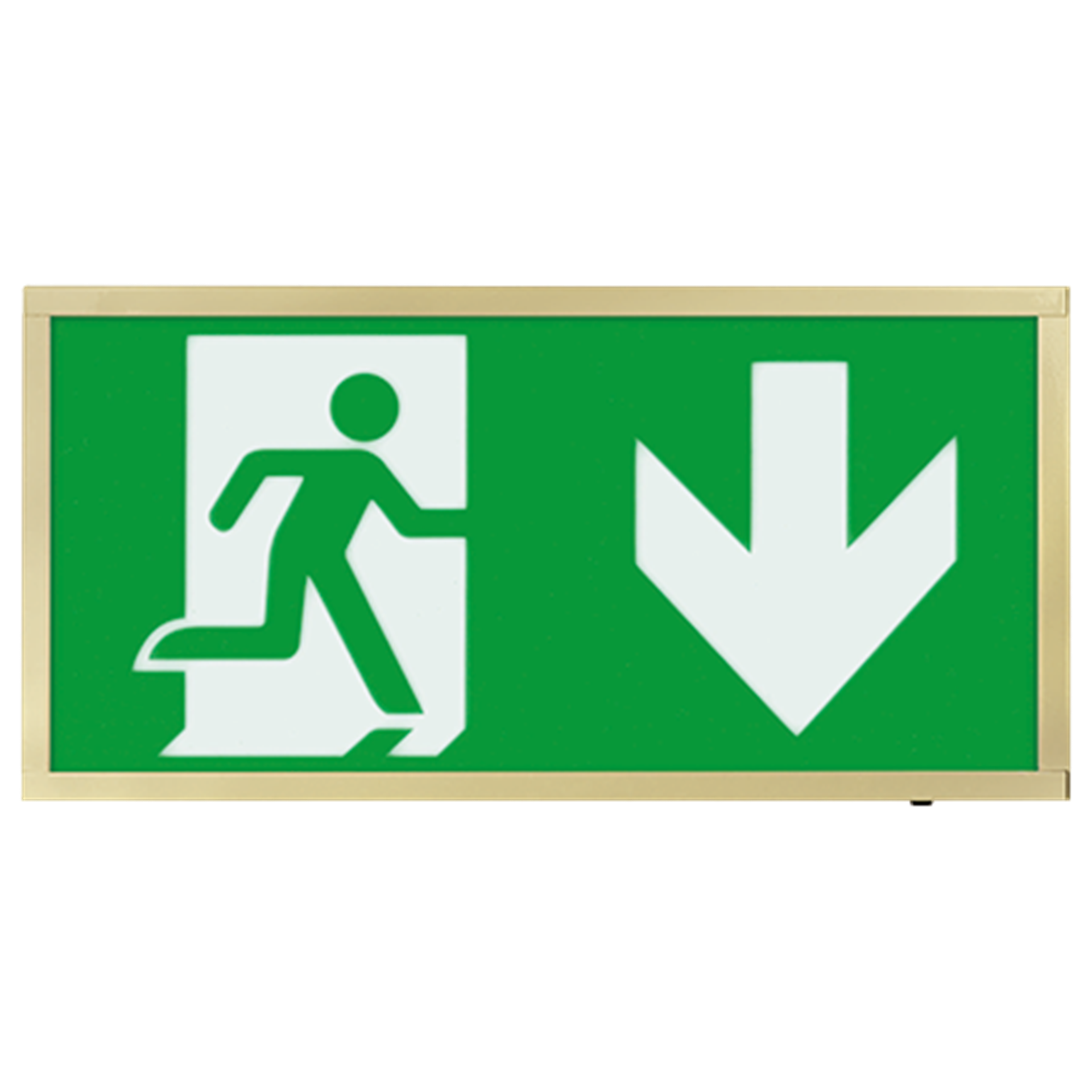 EMLED3WMEXBOXBRD 3W LED Maintained Emergency Brass Sign DOWN